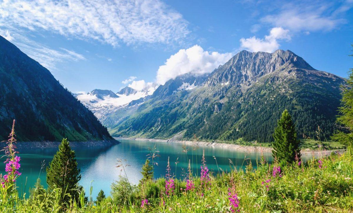 Zillertal Alpleri