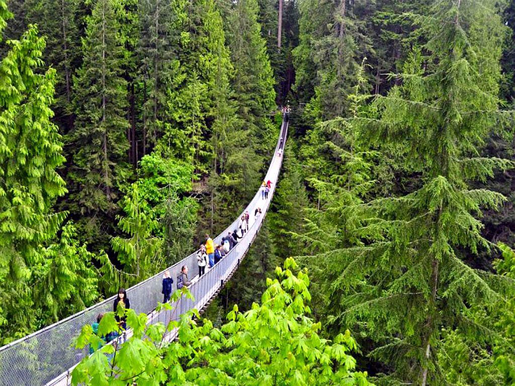 capilano-bridge
